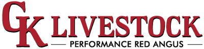 GK Livestock – Dalby QLD – Performance Red Angus & Red Simmentals Logo