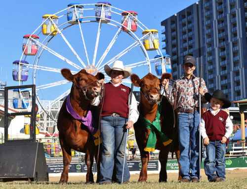 Brisbane Royal Show 2017