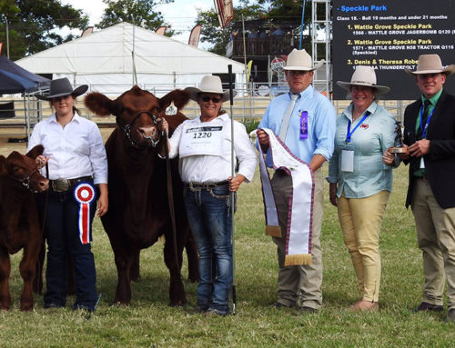 Beef 2021 Results